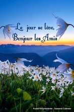 Peut être une image de fleur, ciel et texte qui dit 'Le jour se lève, Bonjour les Amis Posté/F B/Ephéméride Seasonal Calendar'