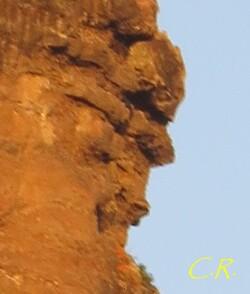 Eau, arbres et rochers émanants de l'été