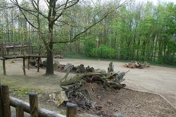 Zoo Osnabruck d50 2012 037