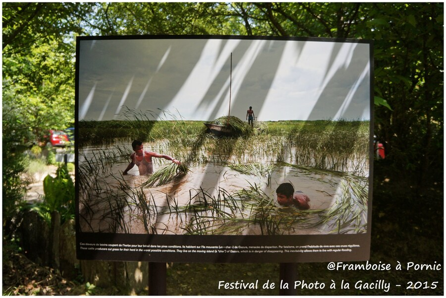 Festival Photo La Gacilly 2015