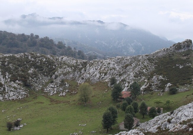 5 Sur la route du lac de Covadonga (41)