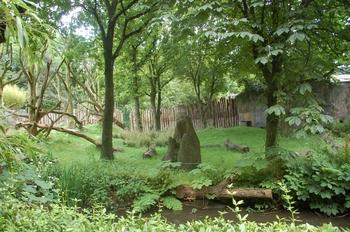 Zoo Duisburg 2012 796