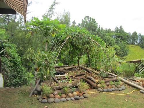 Cultiver en harmonie avec la nature