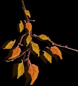 couronnes feuilles et branches