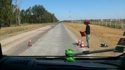 Le voyage en images de la petite grenouille de Simandres-2