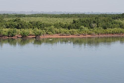 Senegal-Pointe-Sarene--Le-Sine-Saloum-Joal-Fad-copie-3.JPG