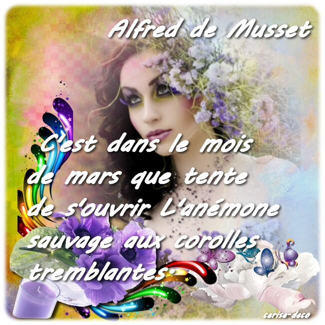 citation illustrée d'alfred de musset : l'anémone