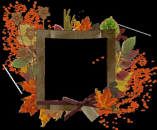 encadrements & Clusters automne