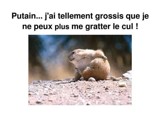 """Les """"après fêtes"""" ! ...."""