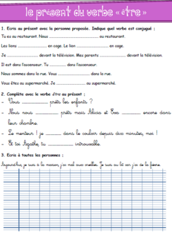 Grammaire Picot CE1 - textes, transpositions, exercices - Période 4