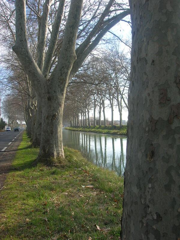 LE  CANAL  DU  MIDI  ET  AUTRES  DECOUVERTES