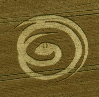 Les crops circles 2012