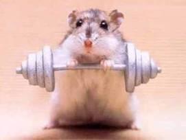 Fais de l'exercice pour rester en forme