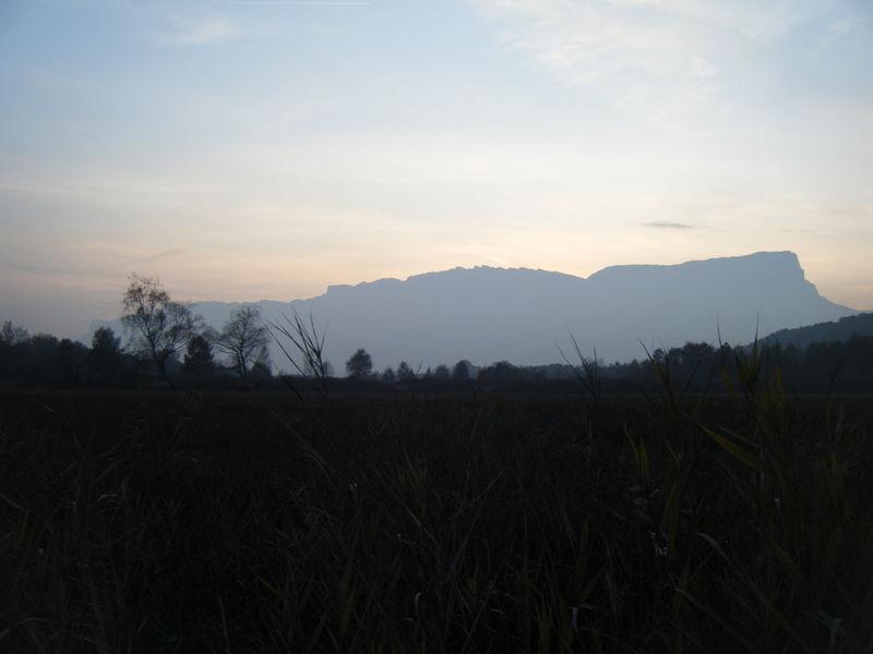 Photo_017