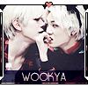 → Commande de WooKya