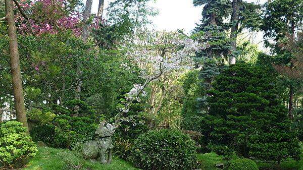 Jardins Albert Kahn 016