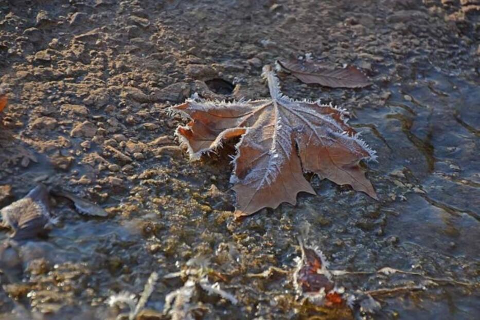 Givre-neige-6-3051_modifie-1.jpg