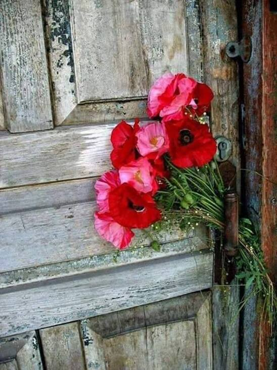 portes-fleurs !!!