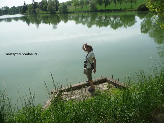 ...autour d'un lac....