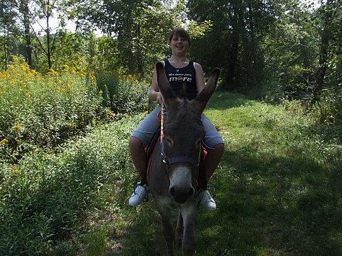 Balade en âne