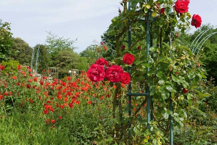 les jardins au Puy du Fou