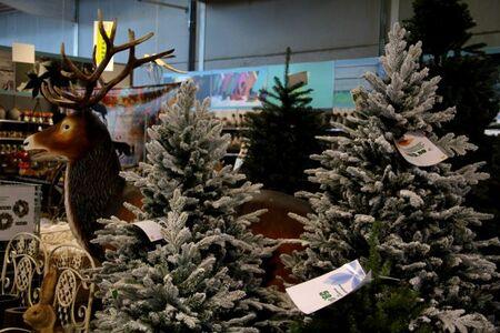 Noël 2015 à Famiflora