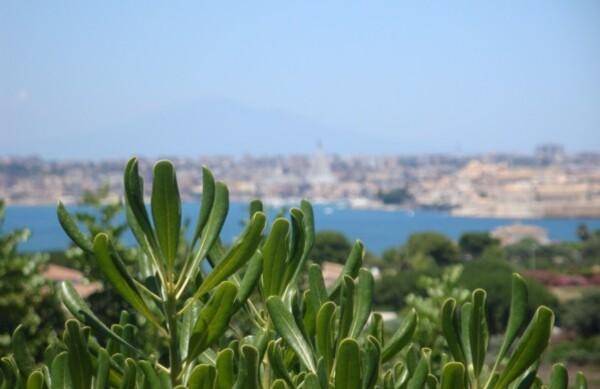Catane, entre la mer Ionienne et l'Etna
