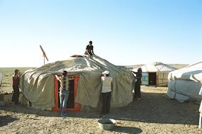 Yurt-construction-5.JPG