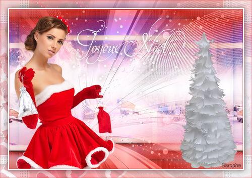 *** Noël 2016 ***