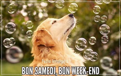 bonne fin de semaine. bisous ....