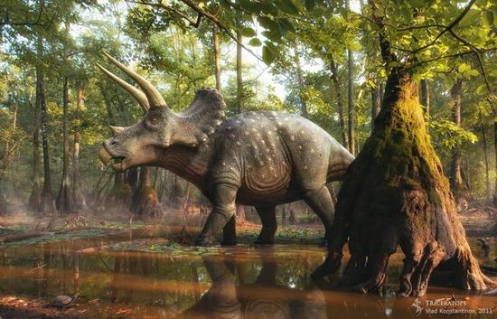 triceratops (2)