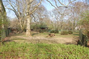 zoo cologne d50 2012 054
