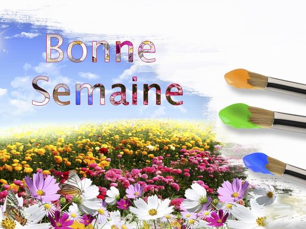 BONNE  SEMAINE  2