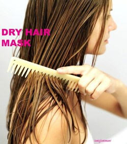 Image de damaged, dry, and hair