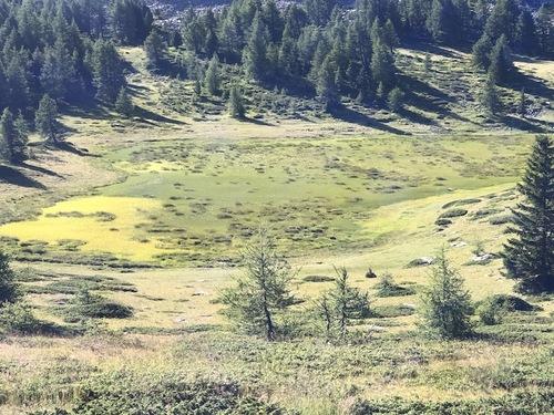 Sommet du Col Bas - Lac Noir