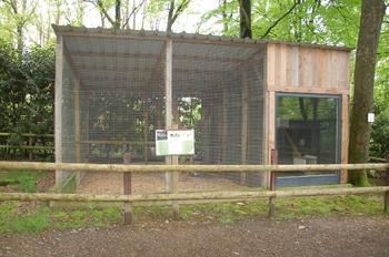 Parc animalier Bouillon 2013 enclos 253