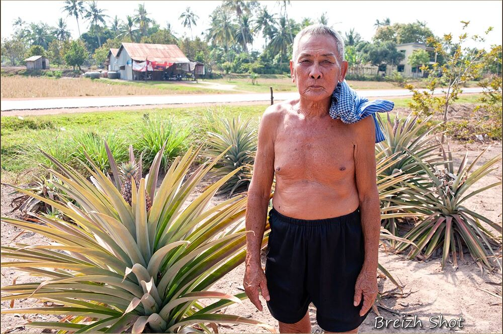 ananas passion - vieil homme - cambodge