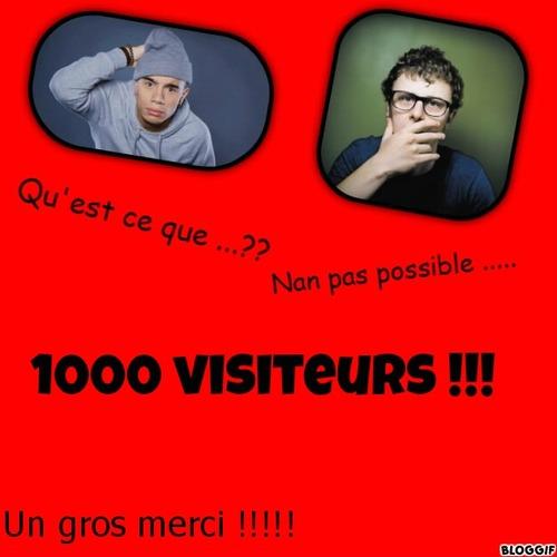 1000 visiteurs !!