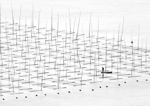 """Agriculture de mer"" de Tugo Cheng — Chine"