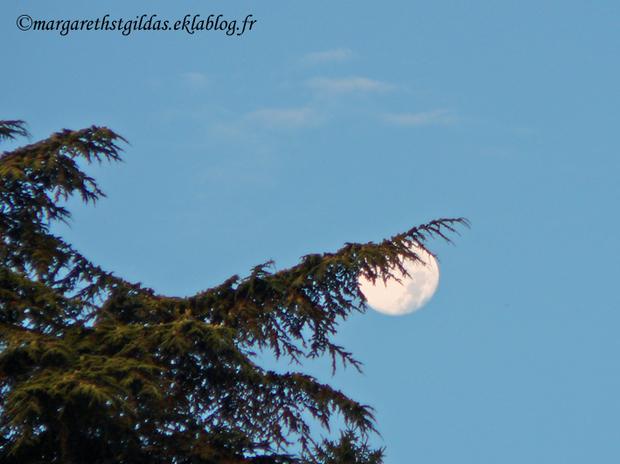 Lune au-dessus de la Loire - Moon above the Loire