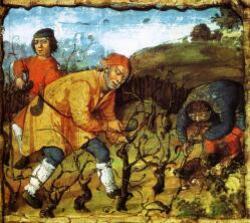 Viticulture et Viniculture à VILLEPERROT au XVe siècle