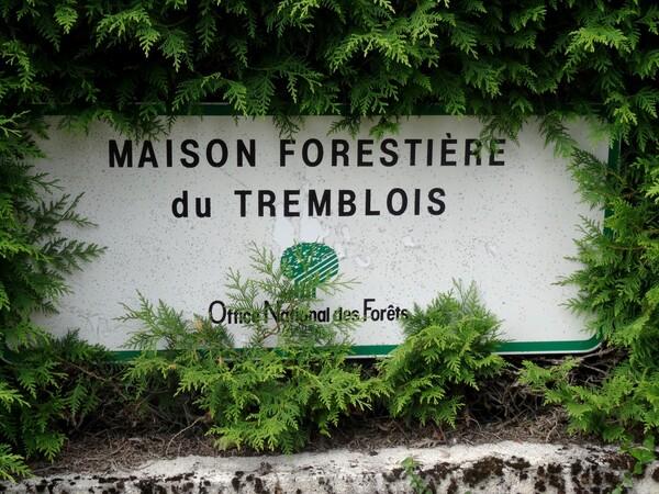 Maisons forestières châtillonnaises