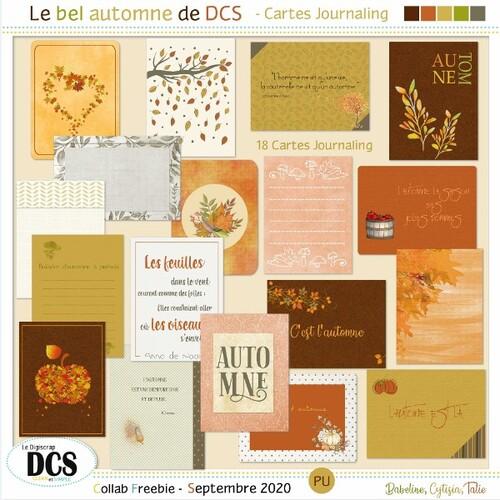 Le bel automne de DCS: les CARTES JOURNALING