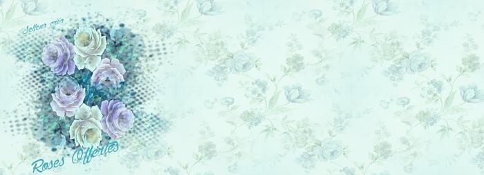Papiers**Fleurs bleues**