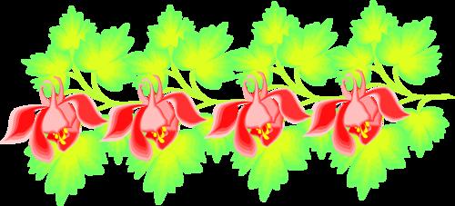 Flower Borders (51).png
