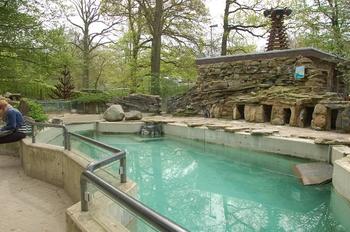 Zoo Osnabruck d50 2012 186