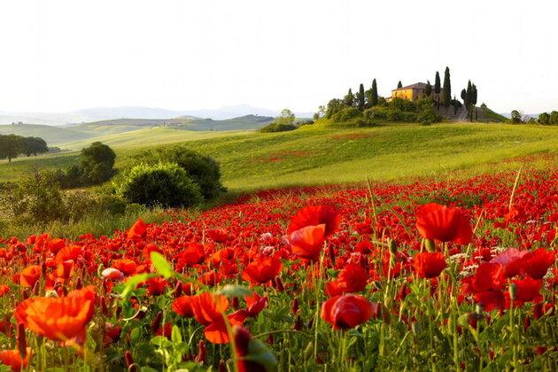 Merveilleuses couleurs de Toscane