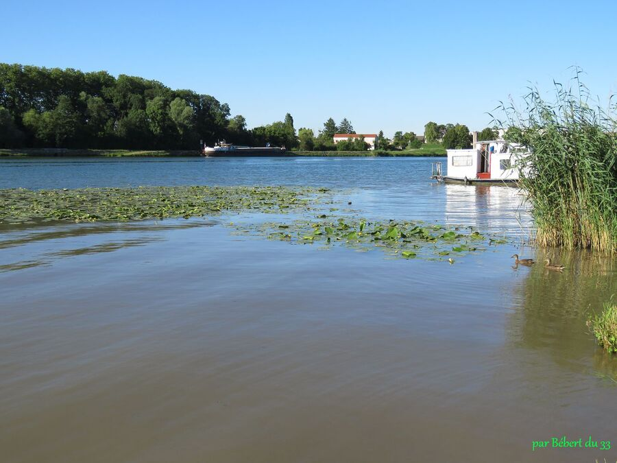 Saint-Jean-de-Losne (21)
