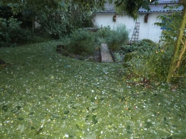 orage-de-grele---8-juin-2014---sous-le-cerisier-apres-l-o.jpg