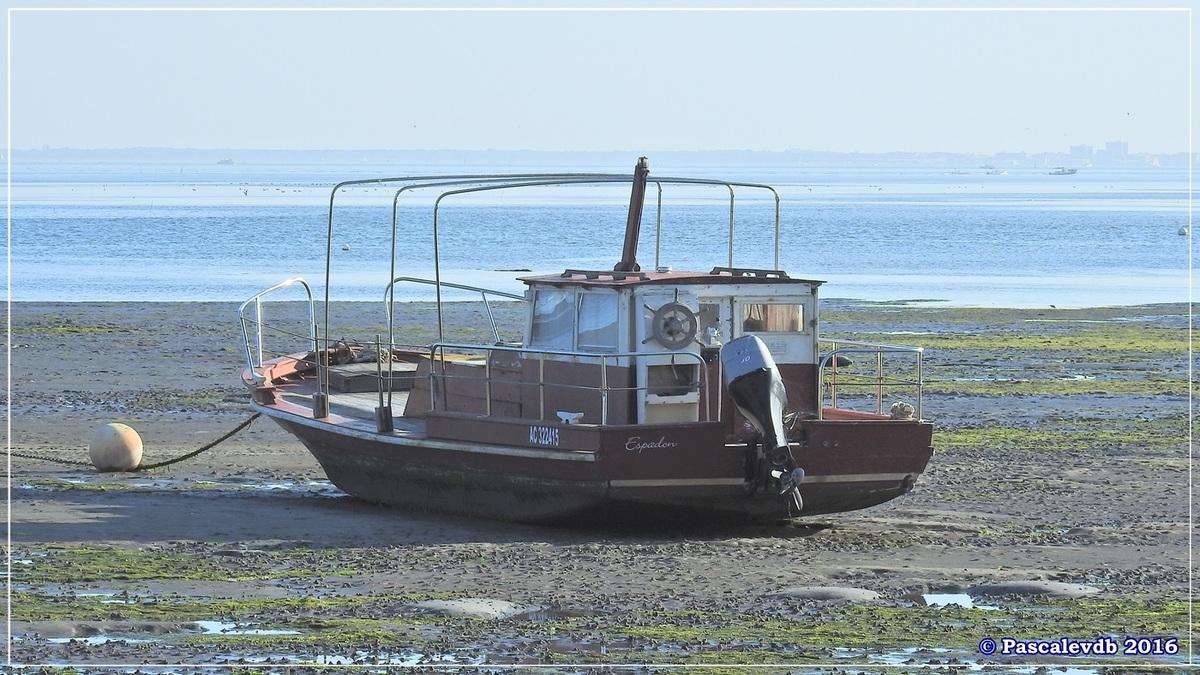 Port ostréicole de Claouey - Novembre 2016 - 1/2